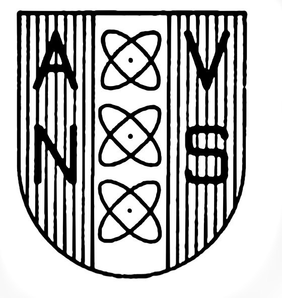 AVNS Logo